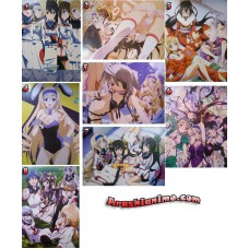 Afiches IS Infinite Stratos